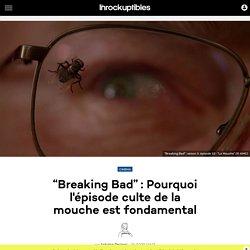 """""""Breaking Bad"""": Pourquoi l'épisode culte de la mouche est fondamental"""