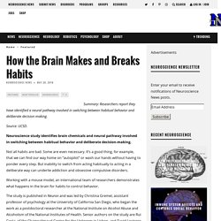 How the Brain Makes and Breaks Habits – Neuroscience News