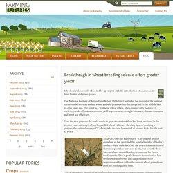 Breakthough in wheat breeding science offers greater yields