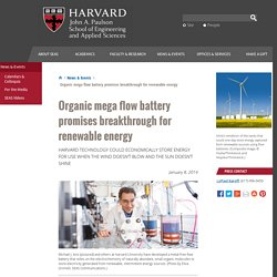 Organic mega flow battery promises breakthrough for renewable energy
