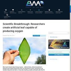 EWAO Scientific Breakthrough: Researchers create artificial leaf capable of producing oxygen