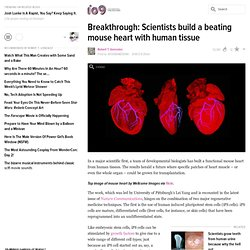 Breakthrough: Scientists have built a fully-functional mouse heart
