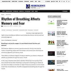Rhythm of Breathing Affects Memory and Fear – Neuroscience News