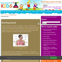 Breathing System Facts for Kids