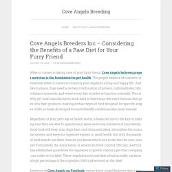 Cove Angels Breeders Inc – Considering the Benefits of a Raw Diet for Your Furry Friend