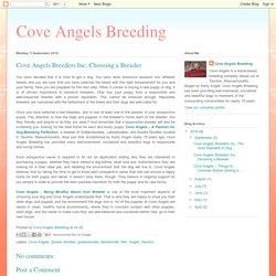 Cove Angels Breeders Inc, Choosing a Breeder