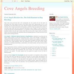 Cove Angels Breeders Inc, The Gold Standard in Dog Breeding