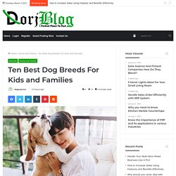 Ten Best Dog Breeds For Kids and Families - DogExpress