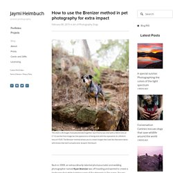 How to use the Brenizer method in pet photography for extra impact — Jaymi Heimbuch