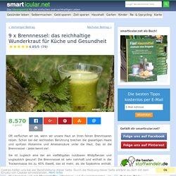 9 x Brennnessel: Köstliches Heilkraut für Küche undGesundheit