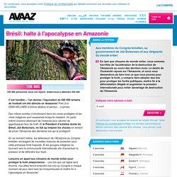 Brésil: halte à l'apocalypse en Amazonie