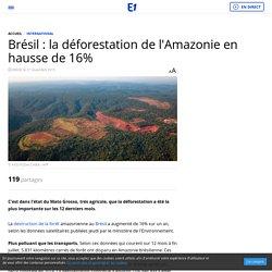 Brésil : la déforestation de l'Amazonie en hausse de 16%