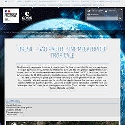 Brésil - São Paulo : une mégalopole tropicale