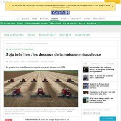 Soja brésilien : les dessous de la moisson miraculeuse