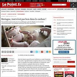 Bretagne, tout n'est pas bon dans le cochon !