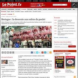 Bretagne : la descente aux enfers du poulet