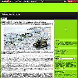 BRETAGNE. Les limites du plan anti-algues vertes