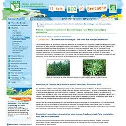 INTERBIO 07/09/12 Le chanvre Bio en Bretagne : une filière aux multiples débouchés