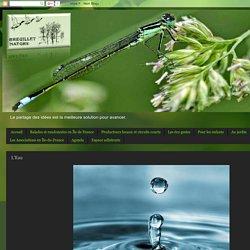 Breuillet Nature: L'Eau