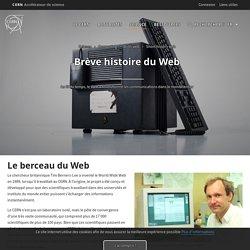 Brève histoire du web