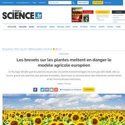 Les brevets sur les plantes mettent en danger le modèle agricole européen
