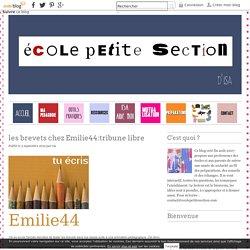 les brevets chez Emilie44:tribune libre