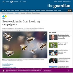 THE GUARDIAN 15/06/16 Bees would suffer from Brexit, say campaigners