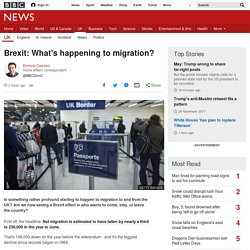 Brexit: What's happening to migration?