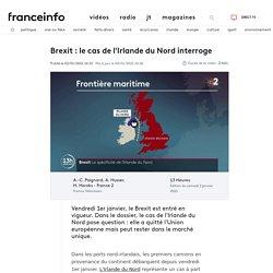 Brexit : le cas de l'Irlande du Nord interroge