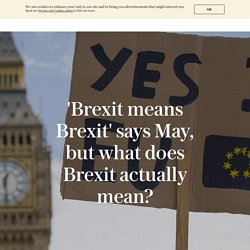 'Brexit means Brexit' says May, but what does Brexit actually mean?