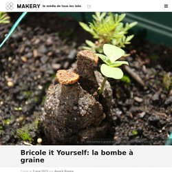 Bricole it Yourself: la bombe à graine