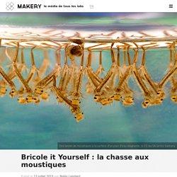 Bricole it Yourself : la chasse aux moustiques