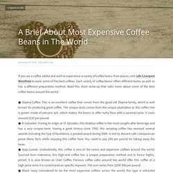 A Brief About Most Expensive Coffee Beans in The World - Tella Balls Cafe