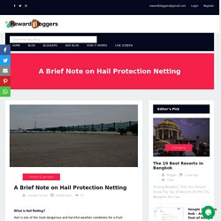 A Brief Note on Hail Protection Netting