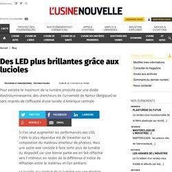 Des LED plus brillantes grâce aux lucioles - Blog