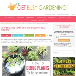 How To Debug Plants Before Bringing Them Indoors - Get Busy Gardening