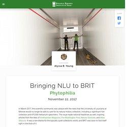 Bringing NLU to BRIT