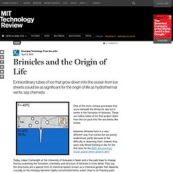 Brinicles and the Origin of Life