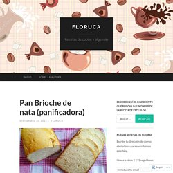 Pan Brioche de nata (panificadora)