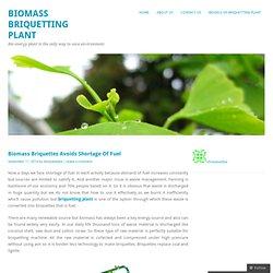Biomass Briquettes Avoids Shortage Of Fuel