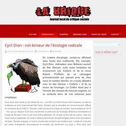 Cyril Dion : coli-briseur de l'écologie radicale