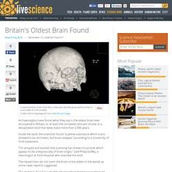 Britain's Oldest Brain Found