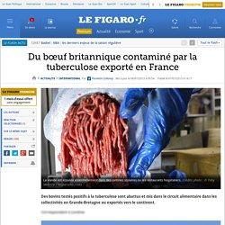 Du bœuf britannique contaminé par la tuberculose exporté en France