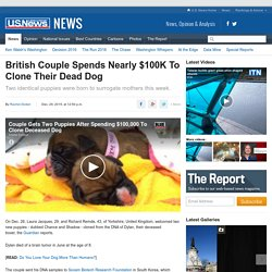 British Couple Clones Dead Dog For $100K
