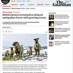 British farmers in turmoil as delayed spring plays havoc with growing season