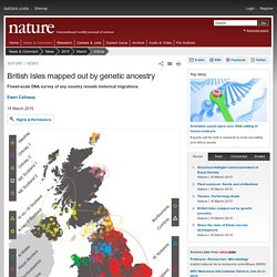 British Isles mapped out by genetic ancestry