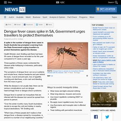 Dengue fever cases spike in SA, Government urges travellers to protect themselves