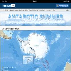 Antarctic Summer