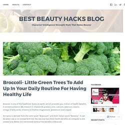 Broccoli- Little Green Trees To Add Up In Your Daily Routine For Having Healthy Life – Best Beauty Hacks Blog