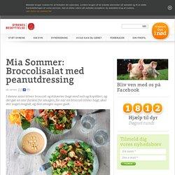 Mia Sommer: Broccolisalat med peanutdressing